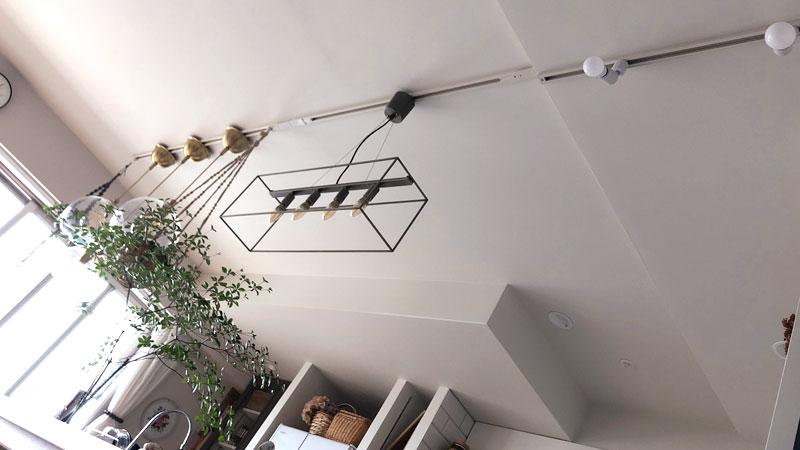 ライティングレールに吊りフックで観葉植物をハンギング